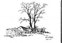 国画 简笔画 手绘 线稿 200_139图片